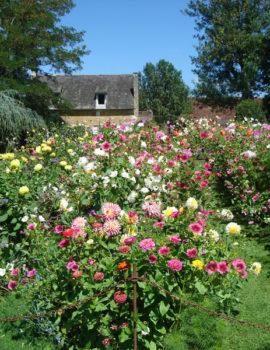 Jardin Fleuriste à Eyrignac