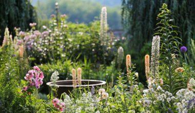 Le jardin fleuriste d'Eyrignac ©Jérôme Morel_web