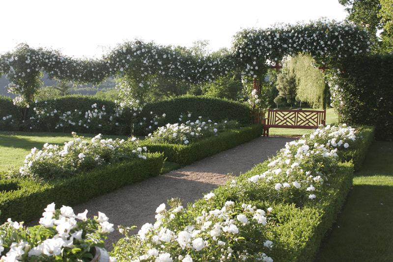Le jardin blanc eyrignac et ses jardins dordogne for Le jardin des fleurs