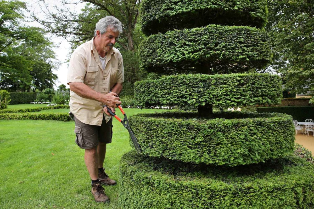 visiter les jardins d eyrignac avec un jardinier eyrignac et ses jardins. Black Bedroom Furniture Sets. Home Design Ideas