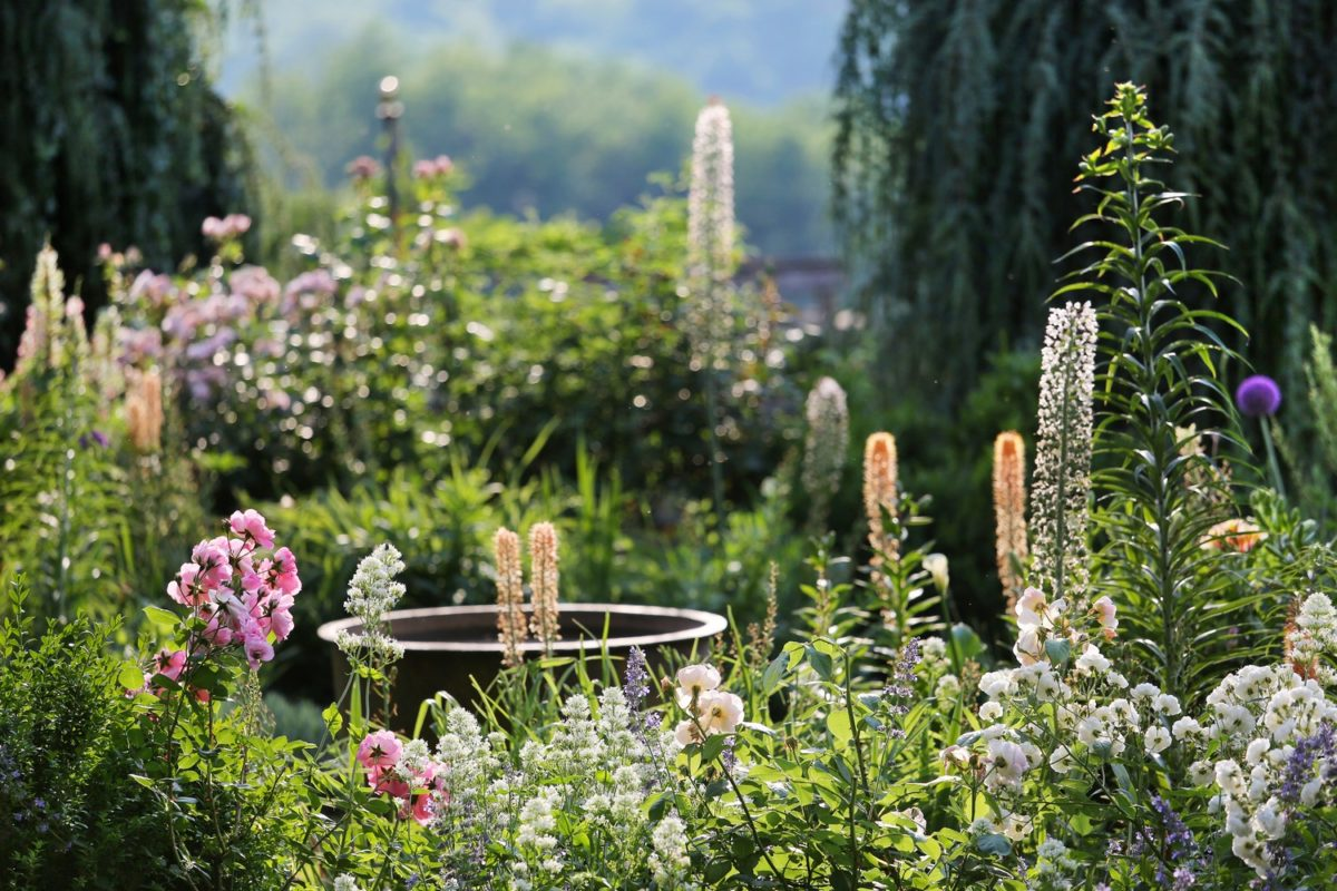 Jardin Fleuriste ©Jérome Morel