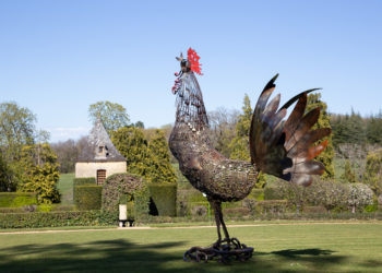 Exposition Pierre Treilhes Coq