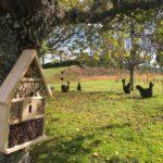 L'hôtel à insectes et la basse-cour de topiaires d'Eyrignac et ses jardins