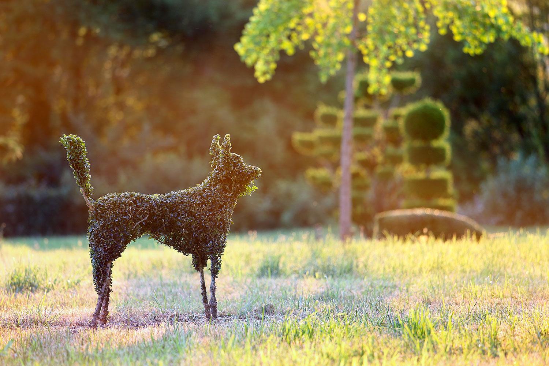 Topiaire en forme de chien dans les jardins d'Eyrignac.
